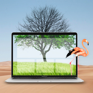 We've noticed a new trend: sustainable websites